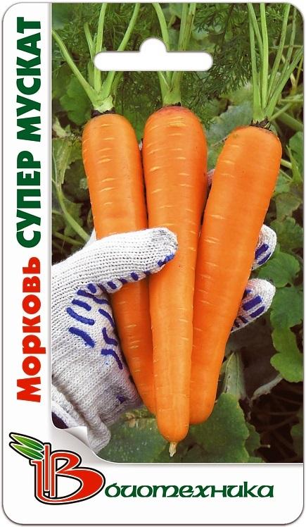 В НАЛИЧИИ! Морковь Супер Мускат
