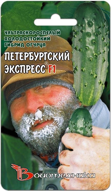 В НАЛИЧИИ! Огурец Петербургский Экспресс F1