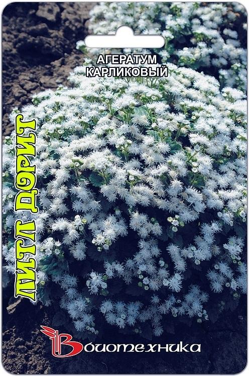 Агератум карликовый белый Литл Дорит